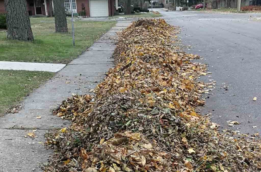 Grace Fall Cleanup 2018